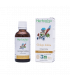 GINKGO BILOBA BIO 50ml - Extrait de plante fraîche BIO